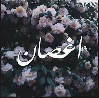 رواية اغصان الياسمين كاملة pdf