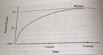 ร่ายกายใช้เวลา 2 นาทีเพื่อเข้าสู่ VO2max