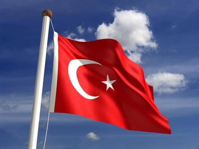 Turki Dukung Hukuman Berat Terhadap Teroris Kulit Putih Brenton Tarrant