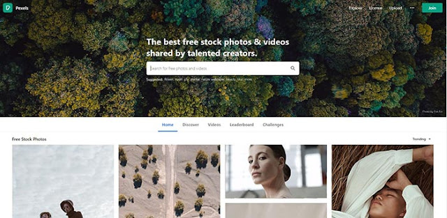 pexels-free-stock-footage-Photo-and-Video-Download-Site