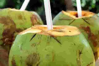 """""""tbc boleh minum air kelapa"""""""