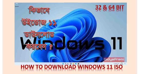 Download Windows 11. iso