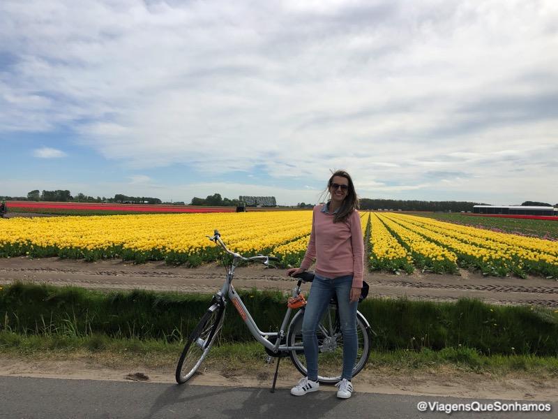 bicicletas no Keukenhof