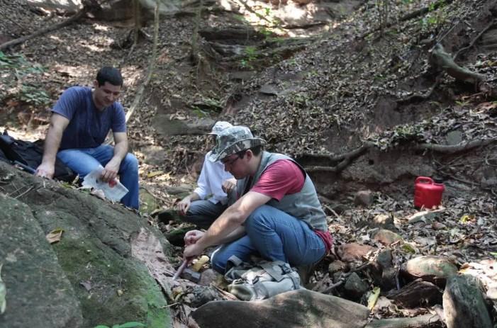 Vértebra de dinossauro é encontrada em Uchoa