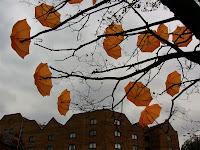 अमरलता के बेले और पेड़ - 100th Poem