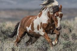 40 Arti Mimpi Naik Kuda Menurut Primbon Jawa