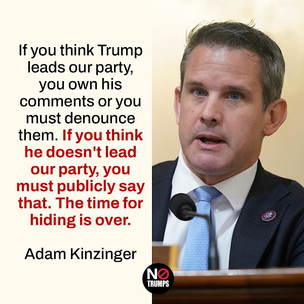 If you think Trump leads our party, you own his comments or you must denounce them. If you think he doesn't lead our party, you must publicly say that. The time for hiding is over. — GOP Rep. Adam Kinzinger of Illinois