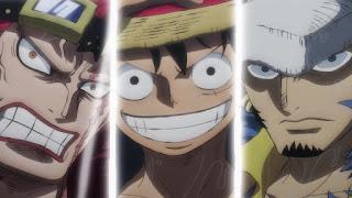 ワンピースアニメ ワノ国編   3船長 ルフィ・ロー・キッド   ONE PIECE