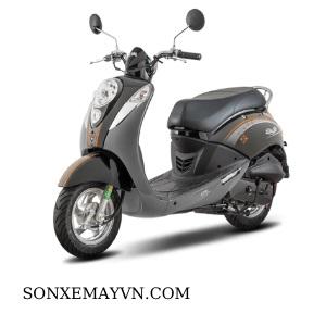 Bán Sơn xe máy SYM màu xám