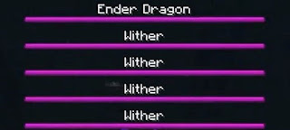 ender dragon and wither fight