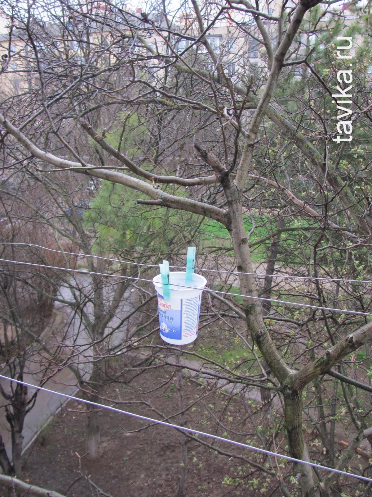 Дождеметр - прибор для измерения осадков