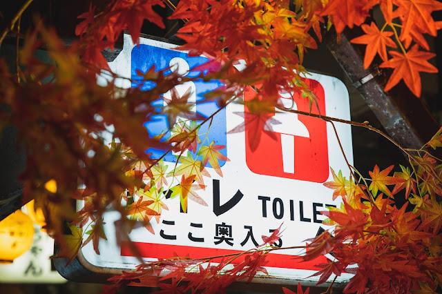 海外生活 トイレ