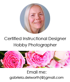 WELCOME TO MY BLOG! I write about Balcony and Indoor Gardening, my Botanical Art. Take a Workshop!