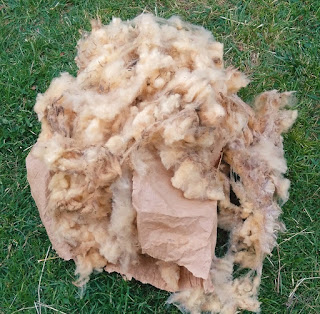 Bulle&Funambule-toison mouton