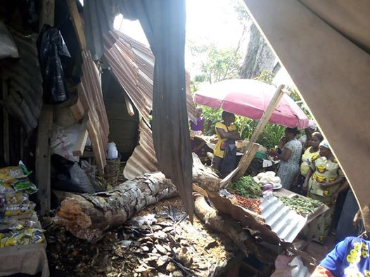 Poor Market Woman And Her Customer Escape Death As A Big Branch Of A Dead Ancient Tree Break Off And Crushes Her Stall In Umuahia