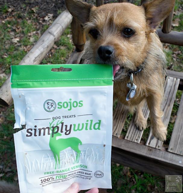 Mini Review: Sojos Simply Wild Dog Treats