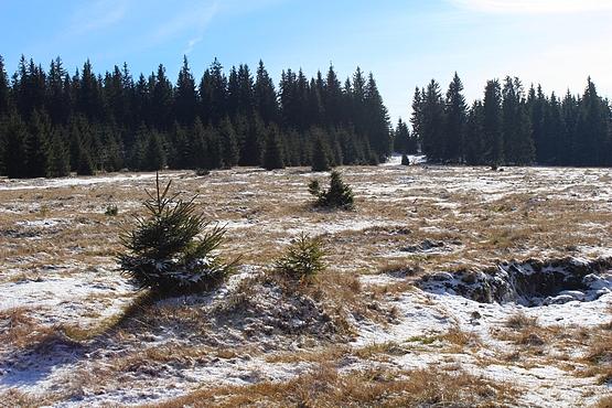 A havason - ahol már havas a táj