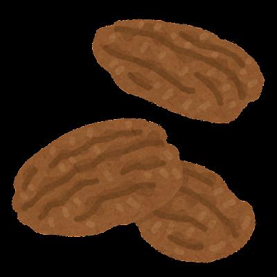 ピーカンナッツのイラスト