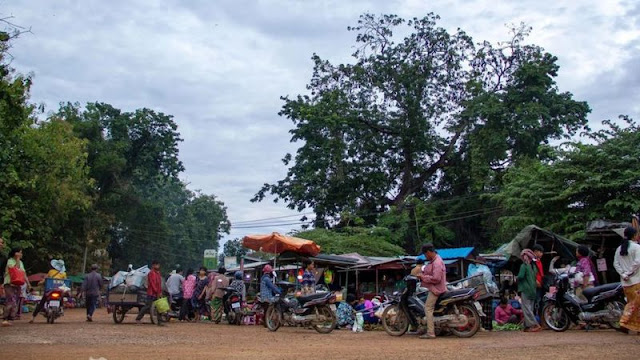 يتميز سوق باتامبانغ في كمبوديا عن سائر الأسواق بوجود خفافيش الثمار