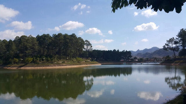 Visiting pine forest in Ban Ang village, Moc Chau