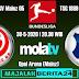 Prediksi Mainz 05 vs TSG Hoffenheim — 30 Mei 2020