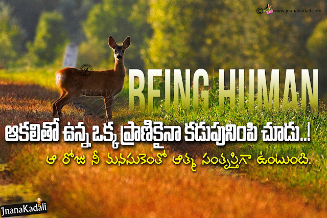 Humanity Quotes in Telugu, Being Human Quotes in Telugu, Best Telugu Humanity Quotes, Being Human Messages in Telugu