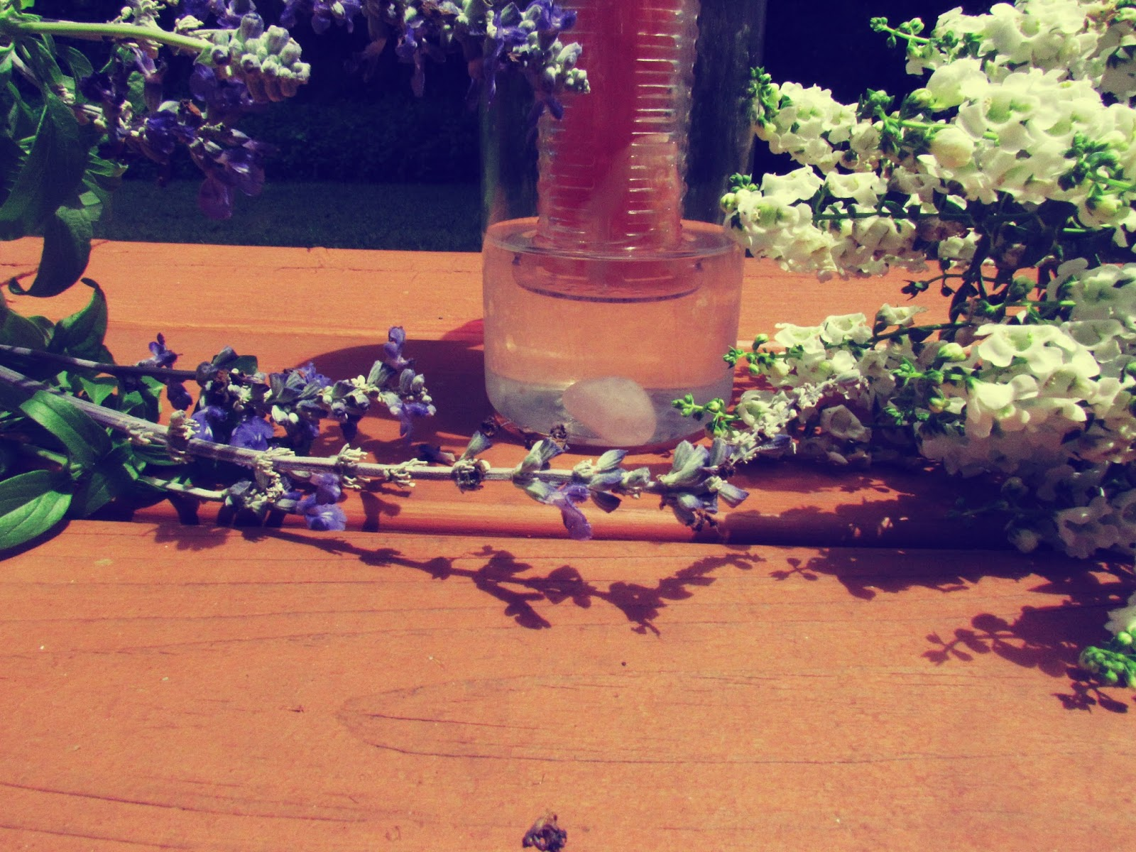Fruit Infuser Water Bottle + Healing Stones and Lavender Flowers