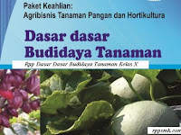 Download Rpp Mata Pelajaran Dasar Dasar Budidaya Tanaman Smk Kelas X Kurikulum 2013 Revisi 2017 Semester 1 dan 2