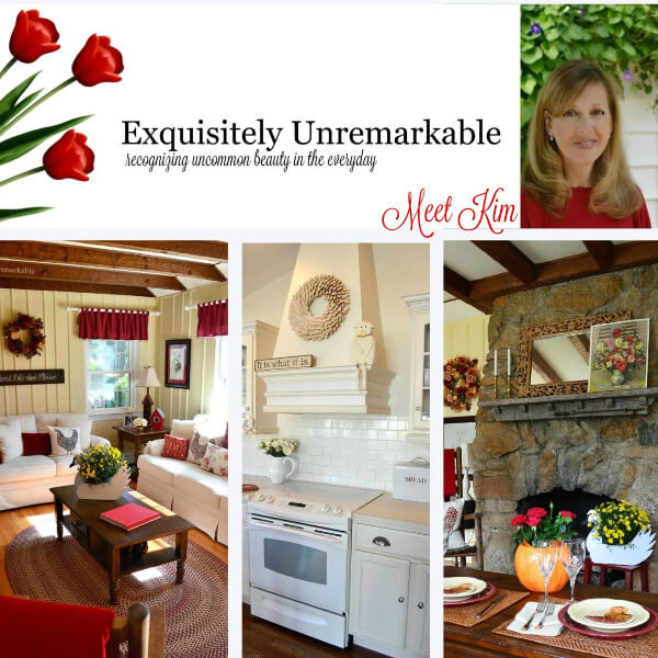 Exquisitely Unremarkable blog collage