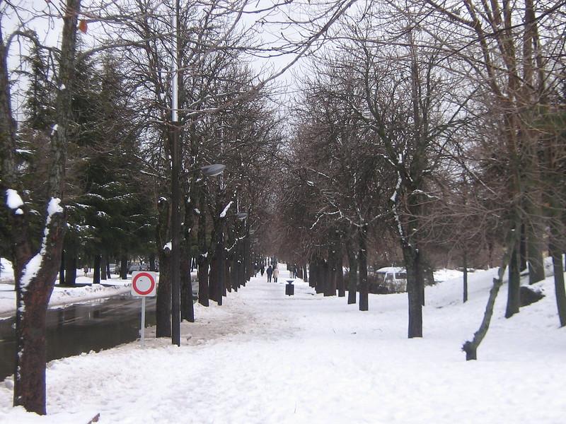 Ifrane Morocco Snow
