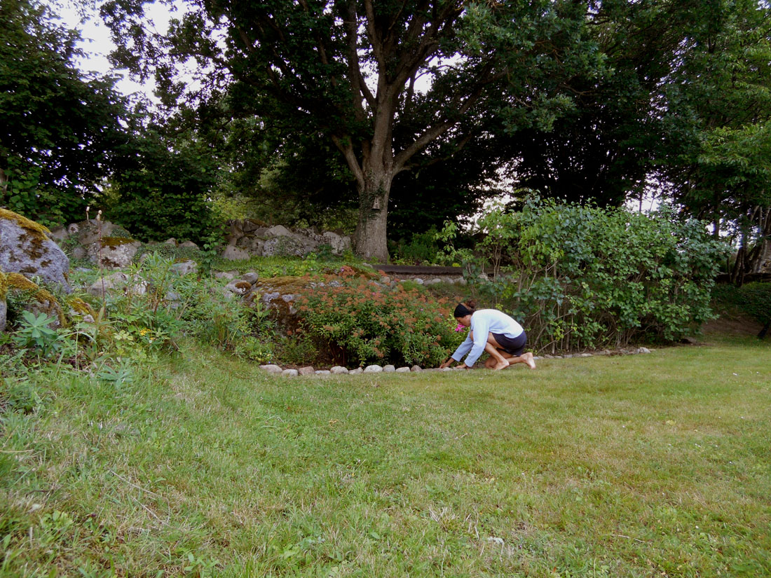 In giardino, 30 luglio 2016