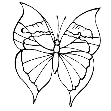 Butterfly coloring pages coloring pages for Cute butterfly coloring pages