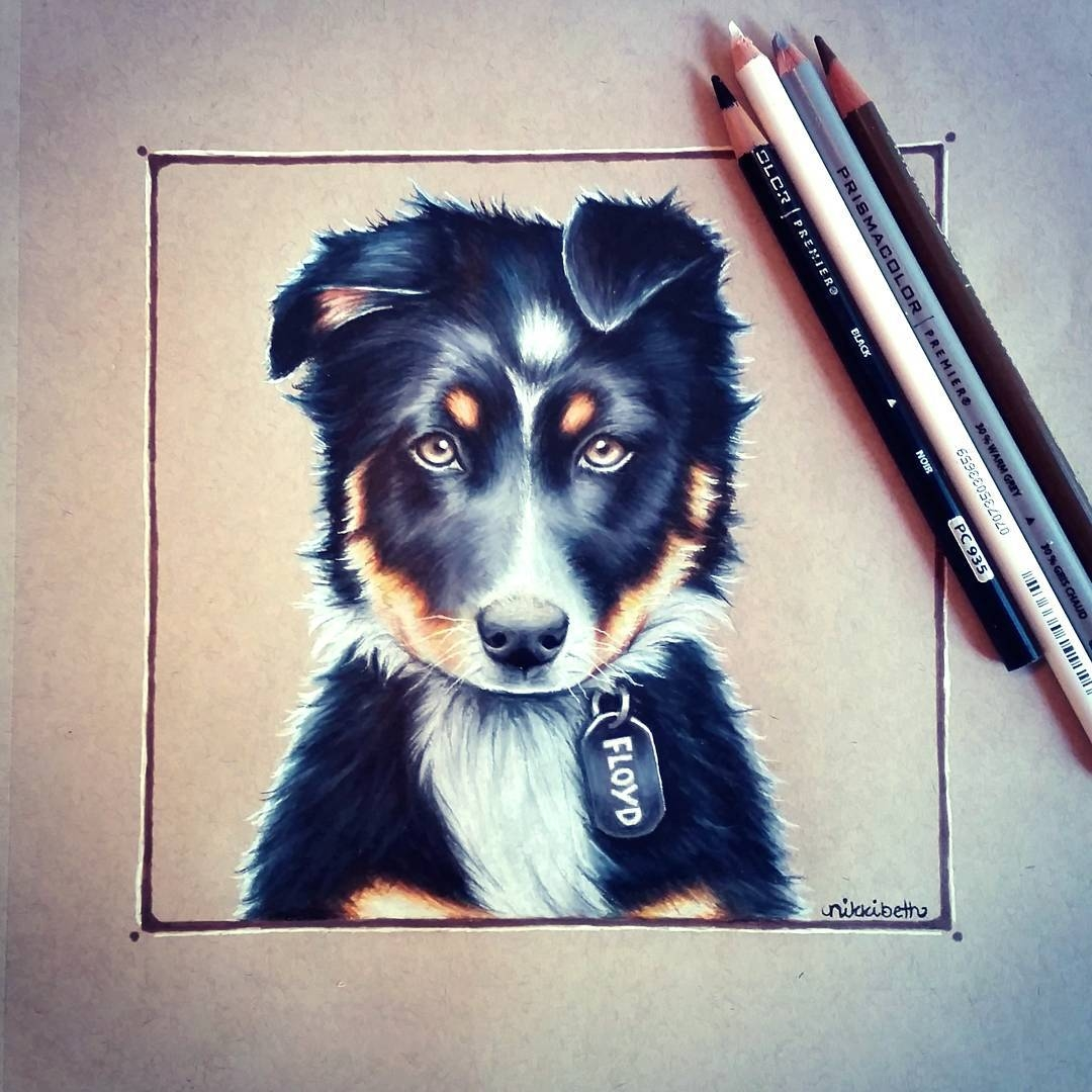 07-Floyd-The-Puppy-Nikki-Beth-Animal-Portrait-Drawings-in-different-Styles-www-designstack-co
