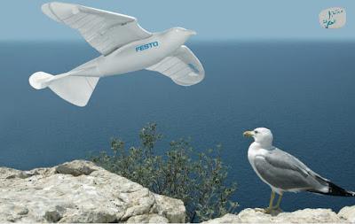 تعرف على طائرة SmartBird و هي