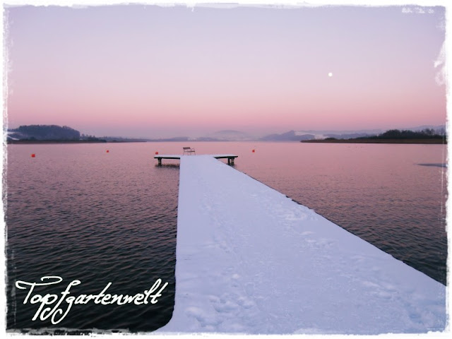 Abendstimmung am Wallersee
