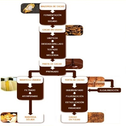 Transformación cacao en chocolate - Slideshare