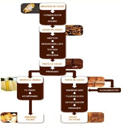 Transformación cacao en chocolate - Slideshare