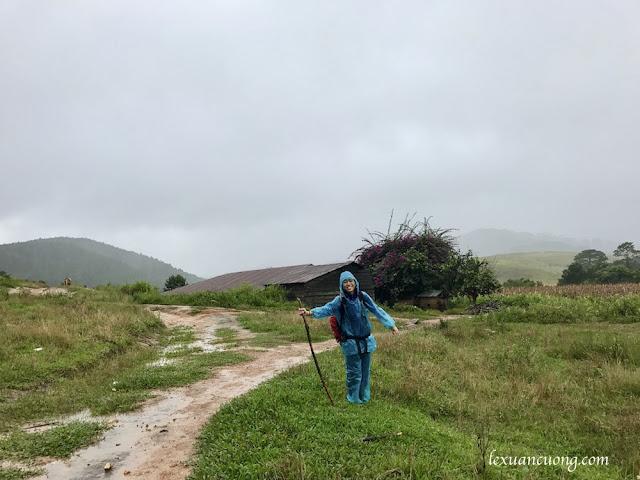 Trekking%2BTa%2BNang%2BPhan%2BDung%2B14 - Cung đường trekking Tà Năng - Phan Dũng ngày trở lại, mùa mưa 2016
