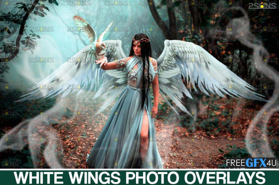 Realistic White Angel Wings Photoshop