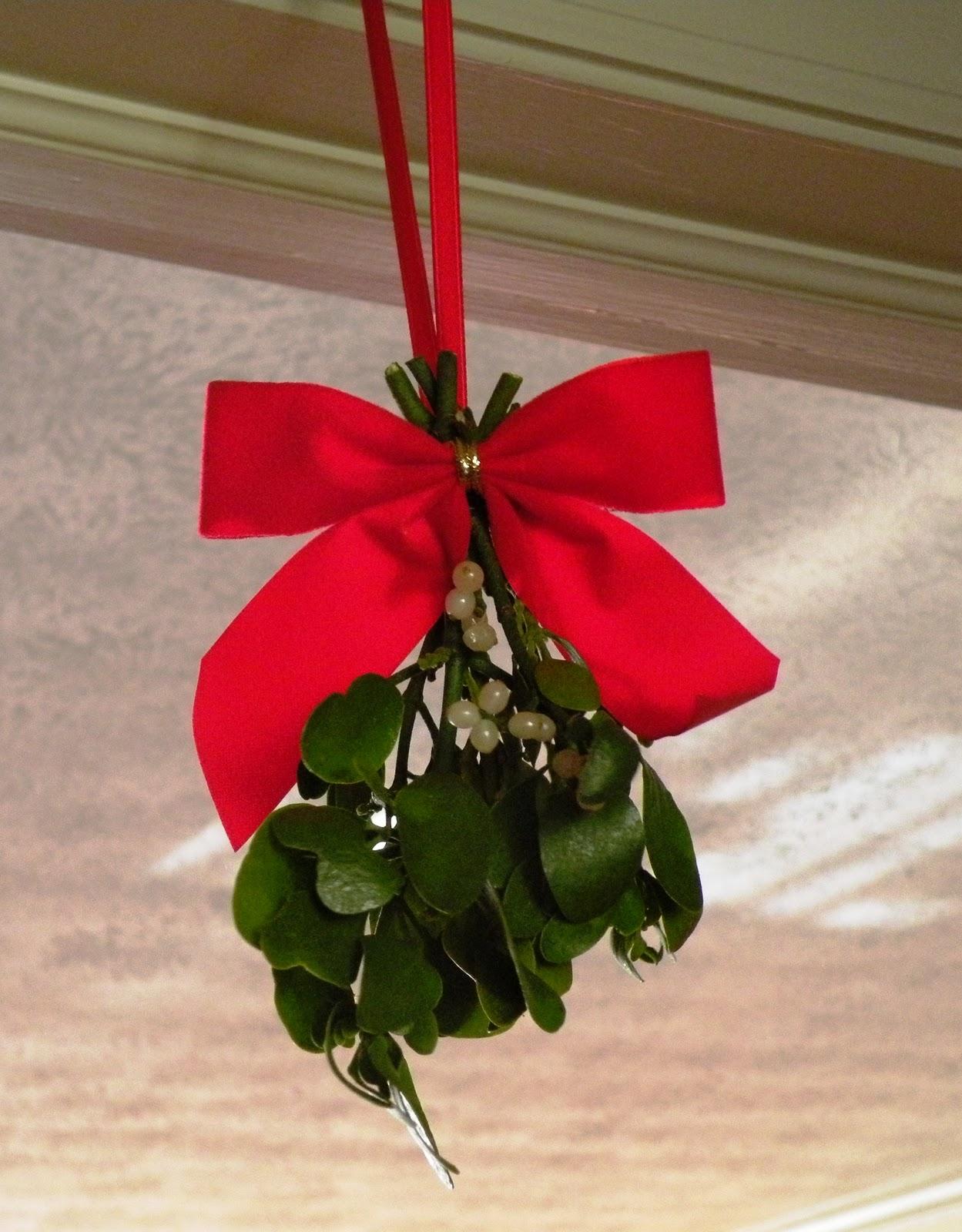 Appalachian Living: The Search for Mistletoe