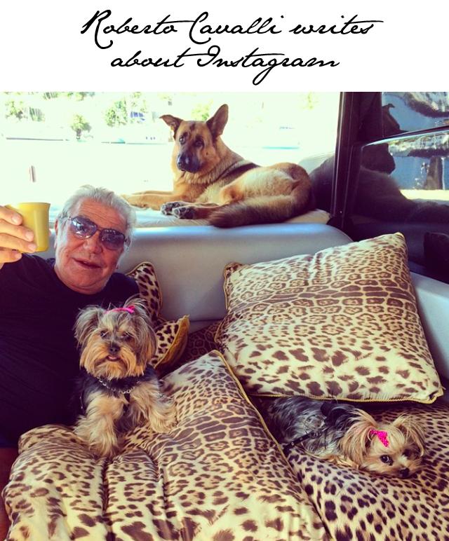 Roberto Cavalli Instagram
