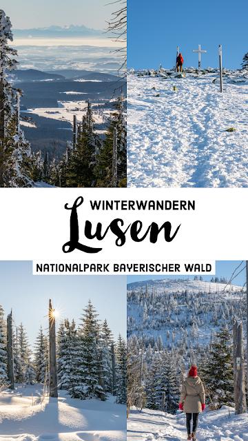 Wanderung auf den Lusen  Winterwandern im Nationalpark Bayerischer Wald 30