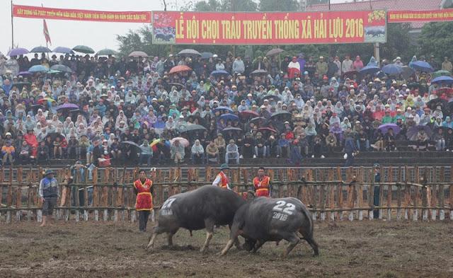 Spring in Vietnam is the season of festivals 11