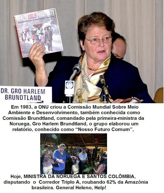 Resultado de imagem para Comissão Brundtland, das Nações Unidas