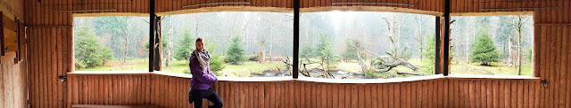 Můj fialový svět blog Bavorský les Baumwipfelpfad Stezka v korunách stromů Lesní zoo