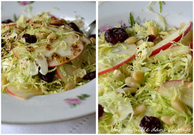 brussels sprouts apple cranberries salad