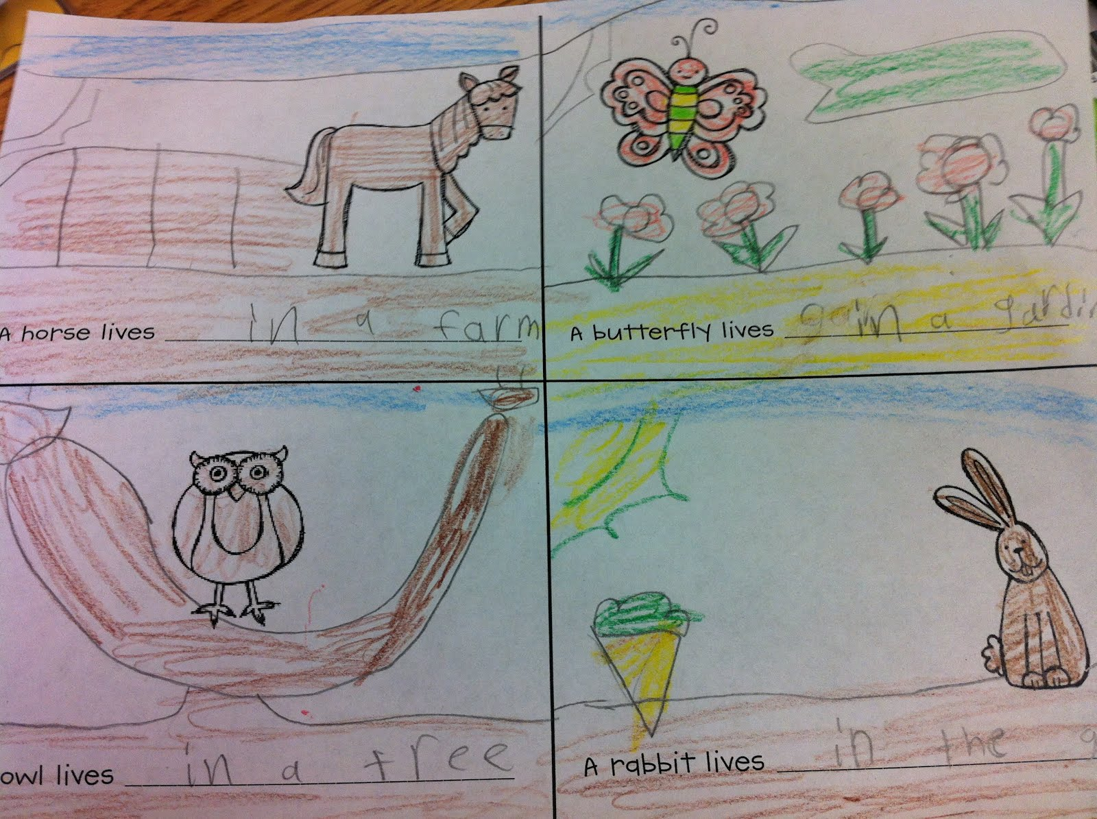 The Adventures Of A K 1 Teacher All About Animals