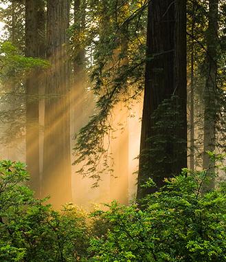 Spirit Quest: Am I Stagnating Spiritually?
