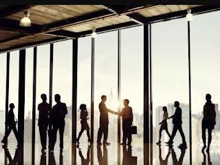 Fungsi Manajemen SDM dalam Lingkungan Organisasi