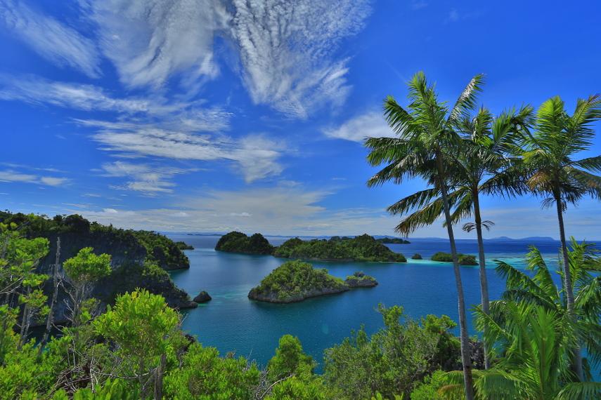 raja ampa surga wisata bahari indonesia